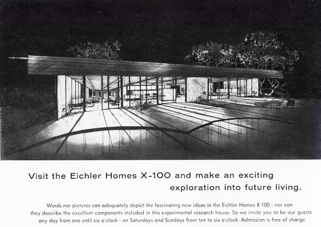 Eichler X-100 rear view illustration